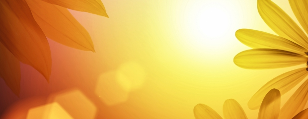 Why The Sun Helps Your Business And Saves You Money 3